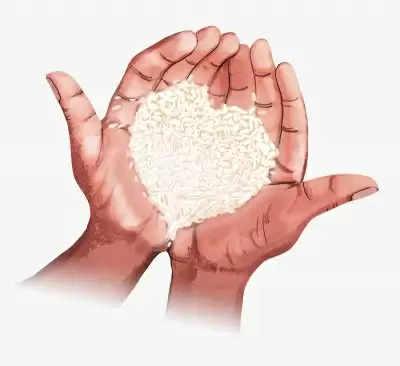 विश्व खाद्य दिवस: कृपया हर अनाज को मूल्यवान समझें