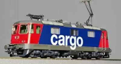 भारत से नेपाल पहुंची पहली निजी कार्गो ट्रेन