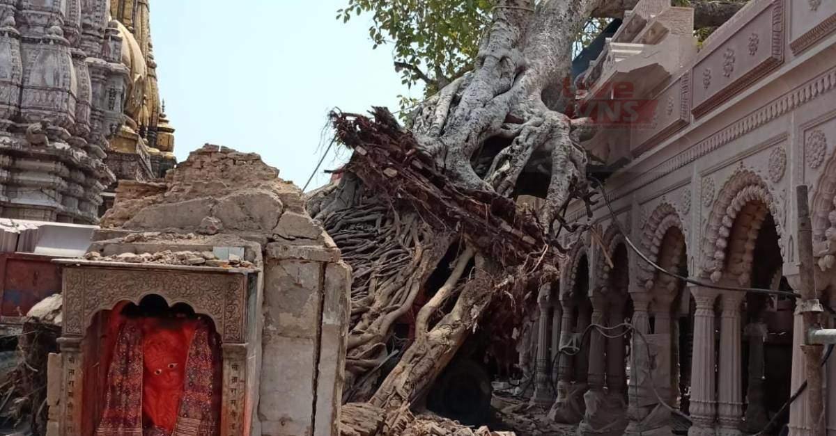 अक्षयवट वृक्ष प्रकरण : श्रीकाशी विश्वनाथ मंदिर के CEO ने दिए जांच के आदेश